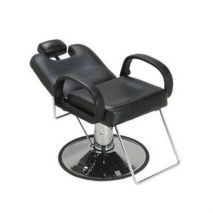 Vance All Purpose Styling Chair