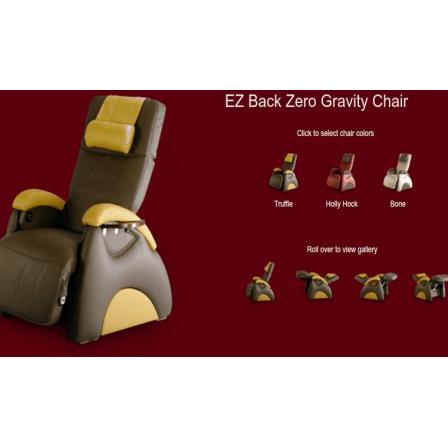 EZ Back Zero GravityEZ Back Zero Gravity