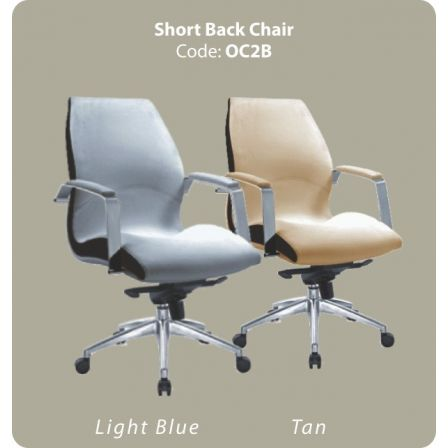 LZ - Short Back 2 Customer Chair
