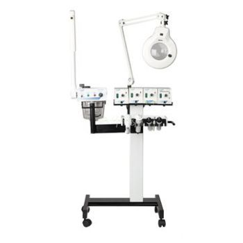 8000A Multi Function Facial System