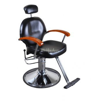 Collins All Purpose Styling Chair